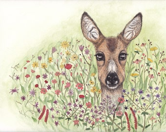 Deer in Flowery Meadow Art Print