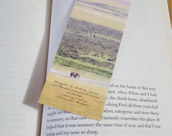 African Landscape Bookmark