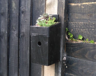 Bird House with roof garden