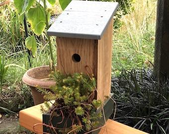 Bird box with Planter