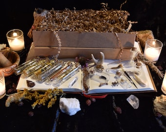 Natural History Mystery Box ~ Stunning 20 Item Oddity Collection ~ Curio Gift Set ~ Ecology Collection