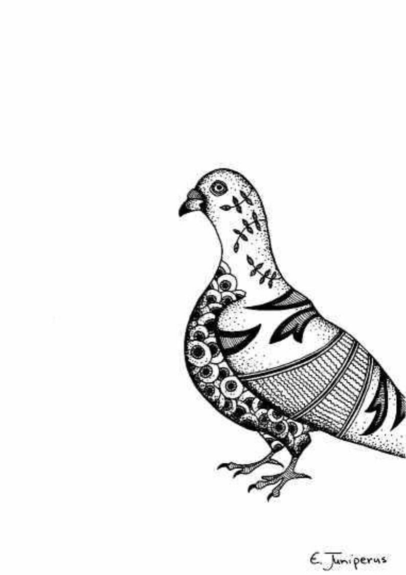 Pigeon Dessins Originaux Tirages Noir Et Blanc Oiseau Etsy