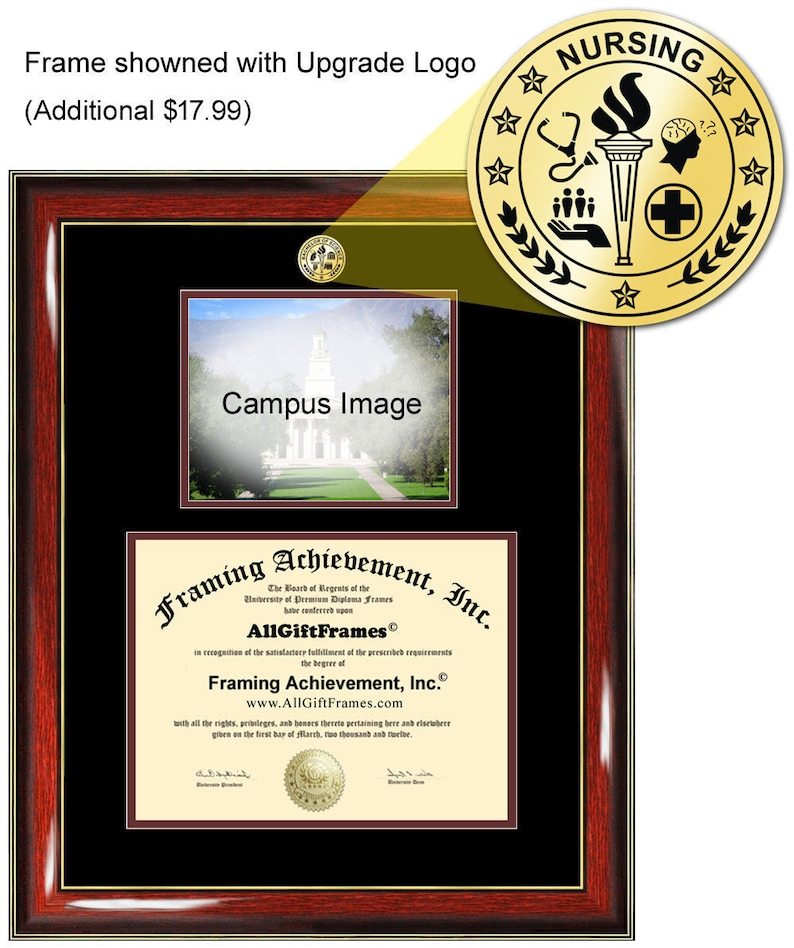Trinity University Texas diploma frame campus degree certificate framing gift graduation frames photo document plaque certification