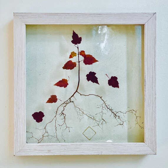 The Audacity: sapling wall hanging