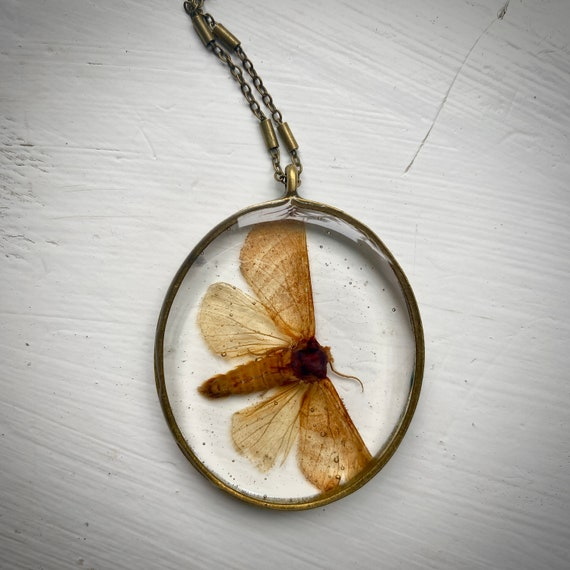 Antique bronze chunky moth necklace