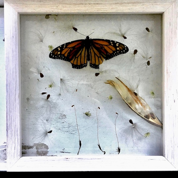 Monarch and milkweed wall hanging