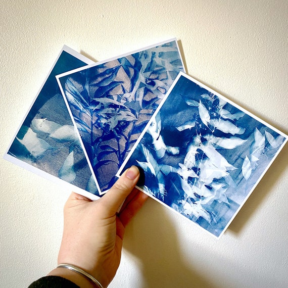 cyanotype card 3-pack