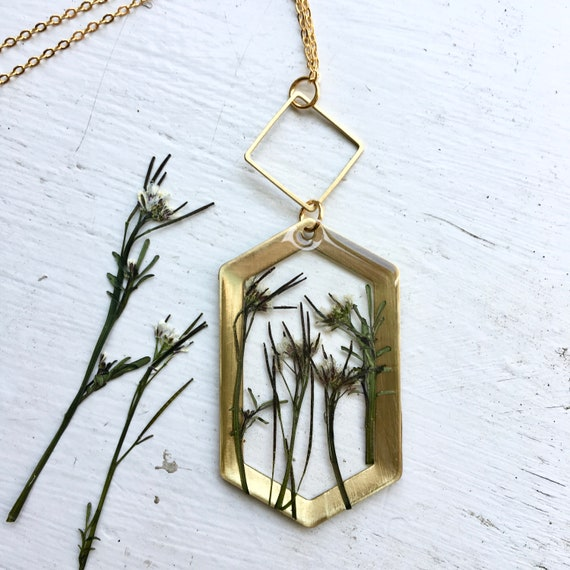 bittercress brass hexagon necklace