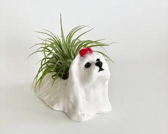 Mini Maltese, Air Planter, Handmade Maltese Sculpture, Air Plant Holder, Maltese Lover Gift, Maltese Mom, Dog Planter, Dog Pot