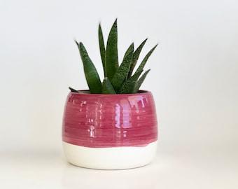 Succulent Pot, Flower Pot, Plant Pot, Planter Pot, Cactus Pot, Raspberry Pot, Maroon Planter, Cute Planter,  Color Block Flower Pot
