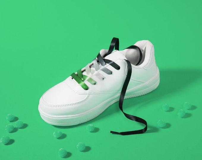 Aromantic Pride Shoelaces
