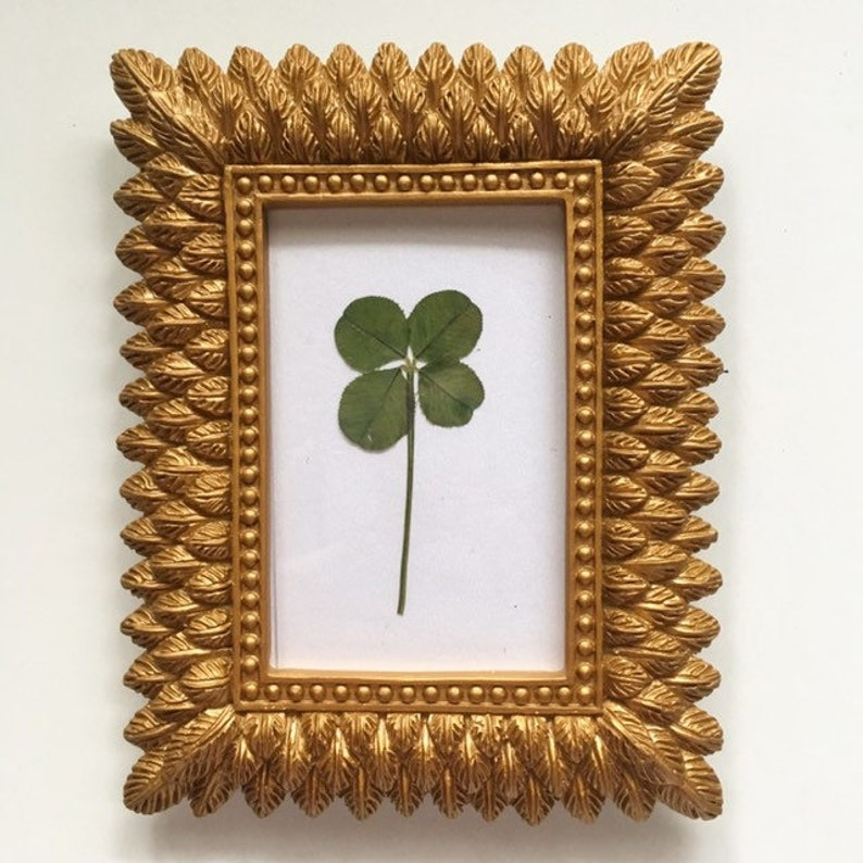 438a68dfa0f Real Four Leaf Clover in Small Gold Feather Frame Wedding