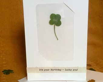 Greeting Card with Real Four Leaf Clover Laminated Wallet Card/Bookmark (It's your Birthday - Lucky you!)
