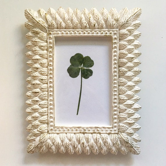 b344c0a803b Real Four Leaf Clover in Small Ivory White Feather Frame
