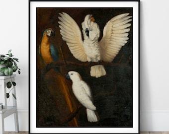 Parrots Print - Parrot Painting, Bird Art, Cockatoo, Parakeet, Macaw, Cockatiel, Bird Watcher Gift, Bird Fine Art Poster, 17th Century