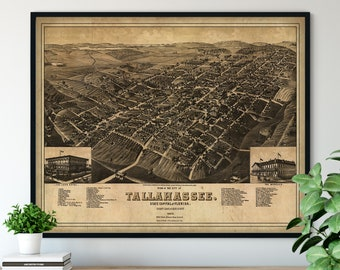 1885 Tallahassee Florida Birds Eye View Print - Vintage Map Art, Antique Street Map Print, Aerial View Poster, Historical Art, FL Wall Art