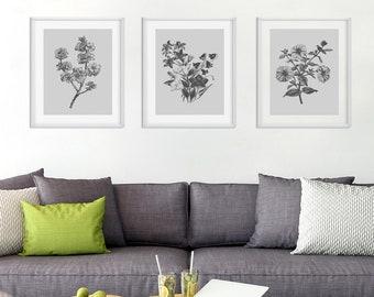 Botanical Print Set, Flower Prints, Set of Prints, Botanical Wall Art, Wall Art Prints, Flower Wall Art, Grey Prints, Prints, Wall Art Set