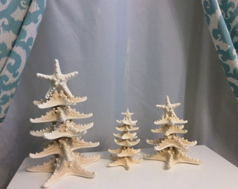 White thorny starfish trees