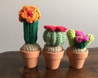 Mini Cactus Pots   Etsy