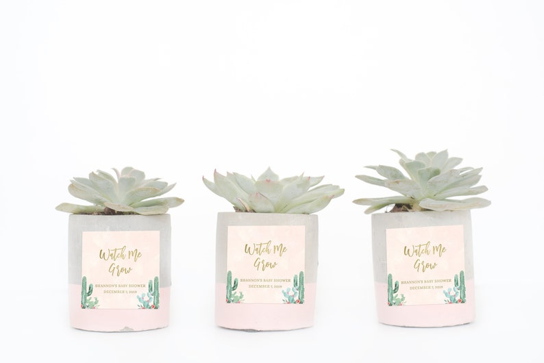 Watch Me Grow Tags Succulent Baby Shower Favors Baby Shower image 0