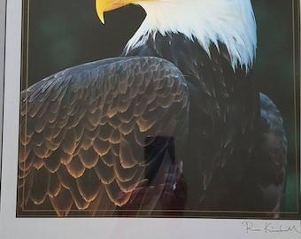 Photographer signed print Ron Kimball American Bald Eagle