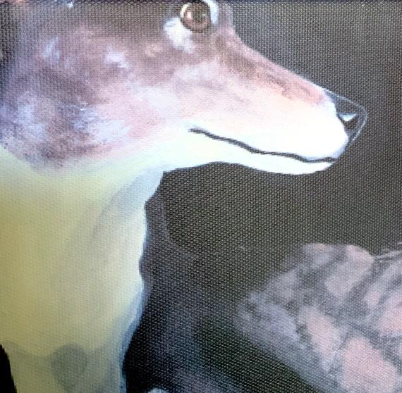 Greyhound Couch Potato Dog Art 8 X8 Canvas Print
