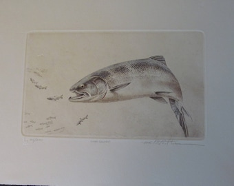 Coho Salmon Limited Edition Print by Mike Stidham