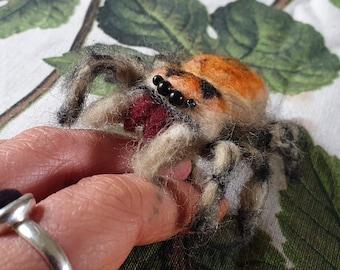 Felt Phidippus regius Jumping Spider