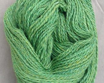 Spring Grass Handspun Yarn (DK to Light Worsted weight)