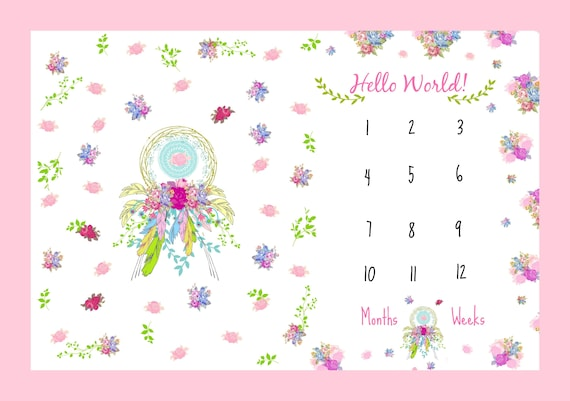 Hello World Monthly Milestone Blanket, Newborn Photo - Muslin Gauze, Minky, Fleece, Organic Cotton - Dream Catcher Shabby Chic Floral
