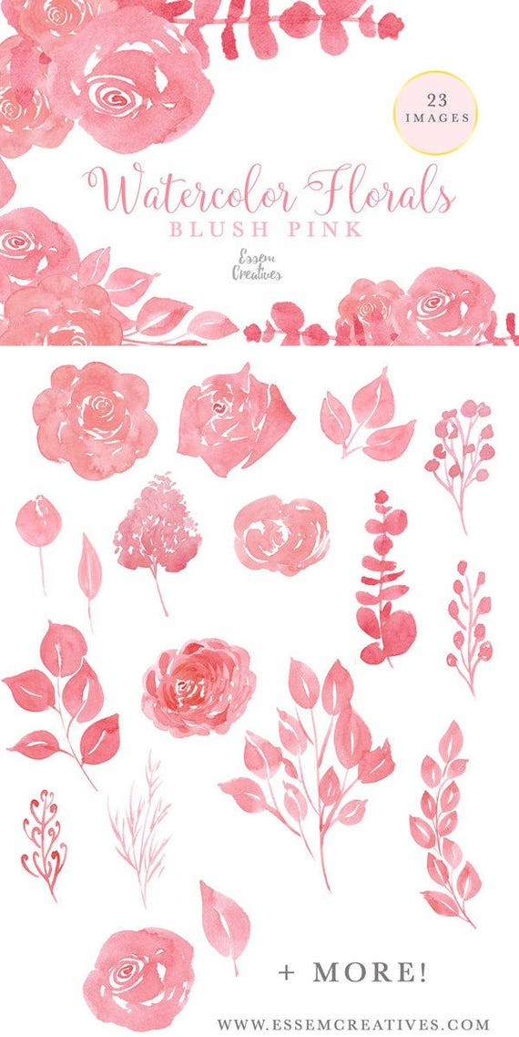 Blush Pink Flowers Clipart Watercolor Florals Clipart Coral Etsy
