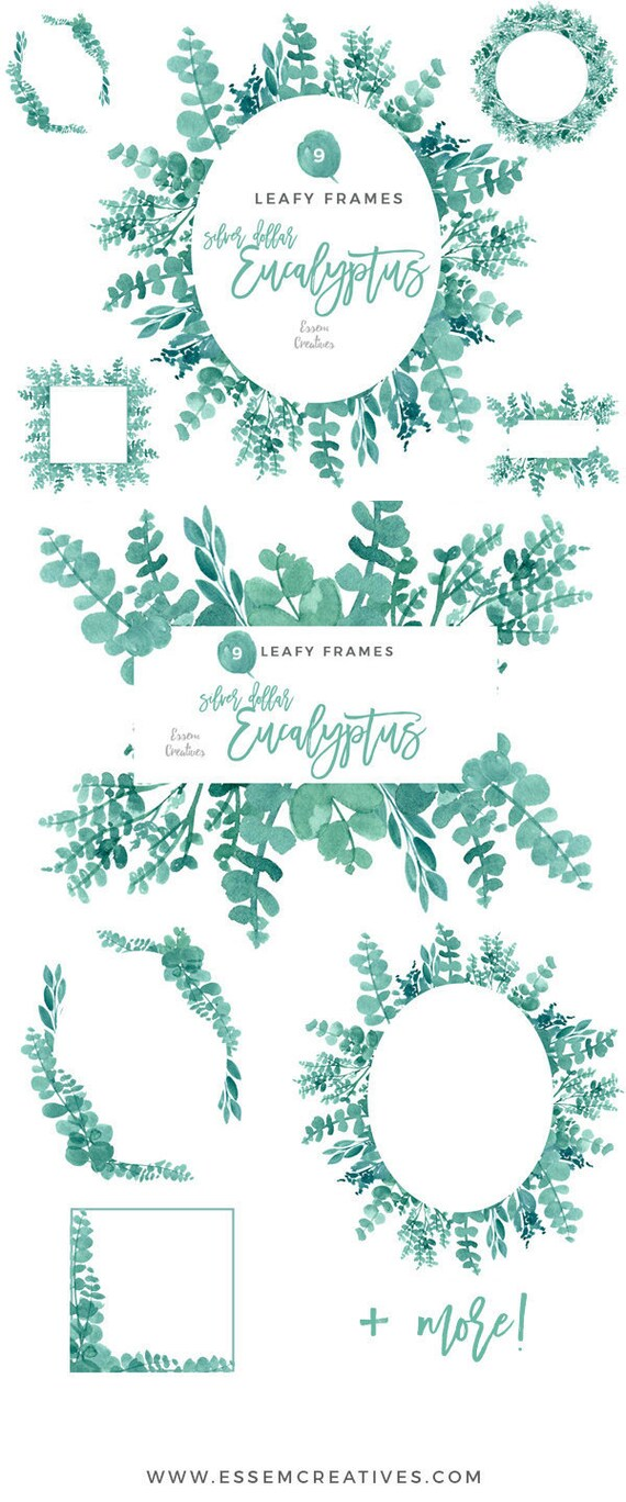 Eukalyptus Rahmen Clipart Aquarell Kranz Clipart digitale | Etsy