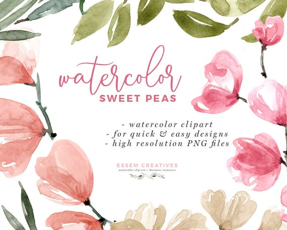 Watercolor Sweet Peas Clipart Floral Invitation Background Etsy