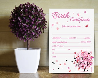 Birth certificate designed for the baby girl