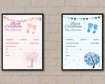 Pink and light blue Birth Certificate designed for the babies