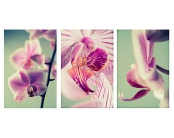 Set of Large Prints, Pink Flower Prints, Floral Wall Art, Large Wall Art, Set of 3 Prints, Orchid Wall Print, Mint Green Wall Art