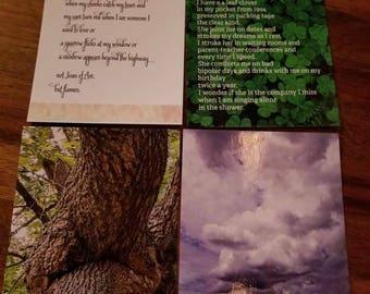 Pack of 12 jumbo postcards -Assortment