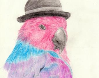 Loro ecléctico / Eclectic parrot - Postcard (5x7in)