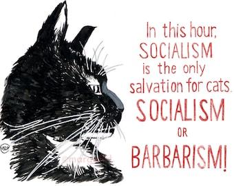 Pablo the socialist cat - small print (A5)