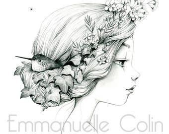 "Wild reproduction A4 ""Hummingbird - Hedera helix"""