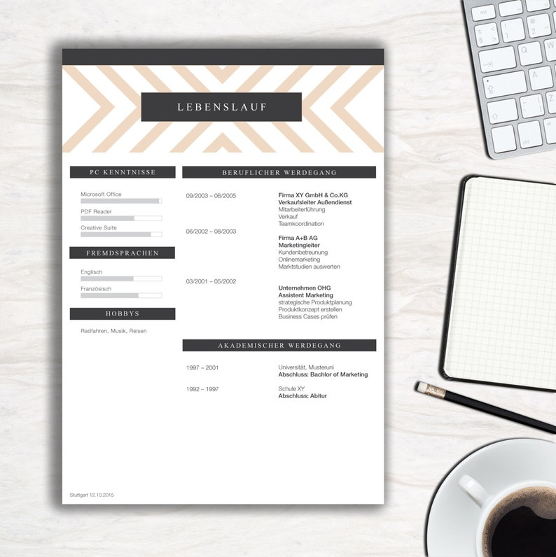 Application template classy stripes for MS Word