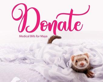 DONATE   Maya's Medical Vet Bill Fund