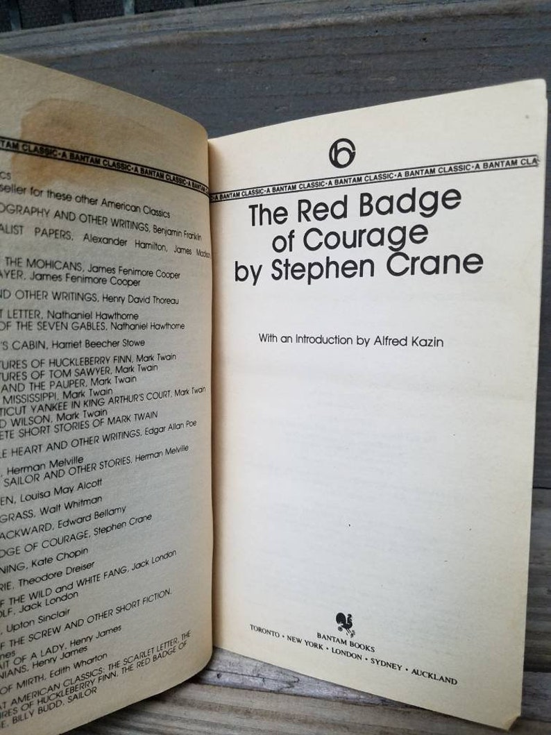 The Red Badge of Courage, Stephen Crane, 1983, first published in 1895 --  civil war/soldier/americas/great novel/history/war/classic books