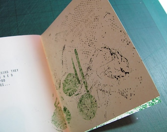A Story of Seed Pods book