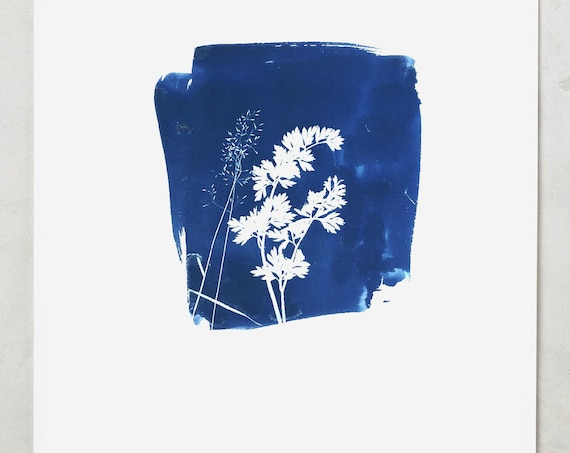 Indigo print, indigo sunprint, sun print, blue indigo painting, abstract indigo painting, blue leaves, blue art, wall art, indigo painting