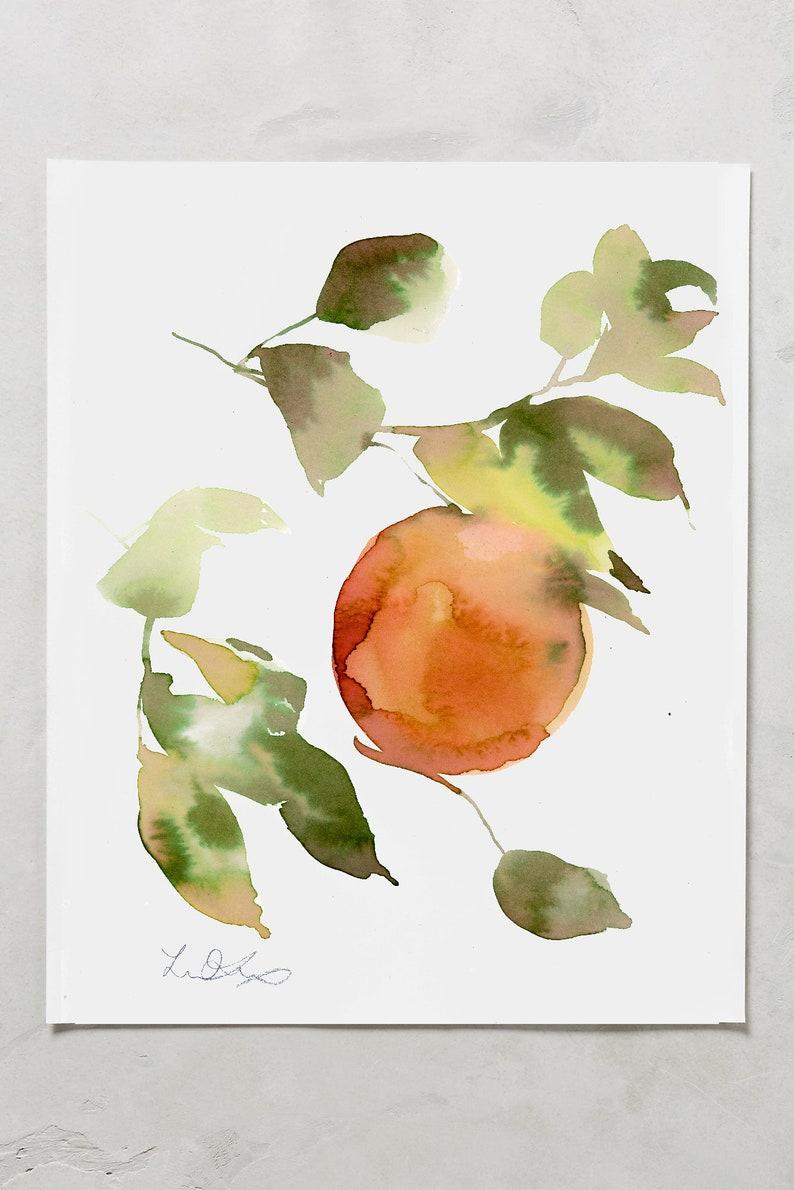 Fruit painting fruit watercolors watercolor oranges image 0