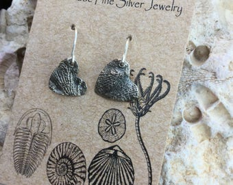 Bryozoan Fossil Hearts on Sterling Silver Earhooks