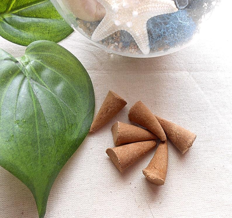 Aromatherapy Smudge Meditation Rosemary Sage Incense Housewarming Gift