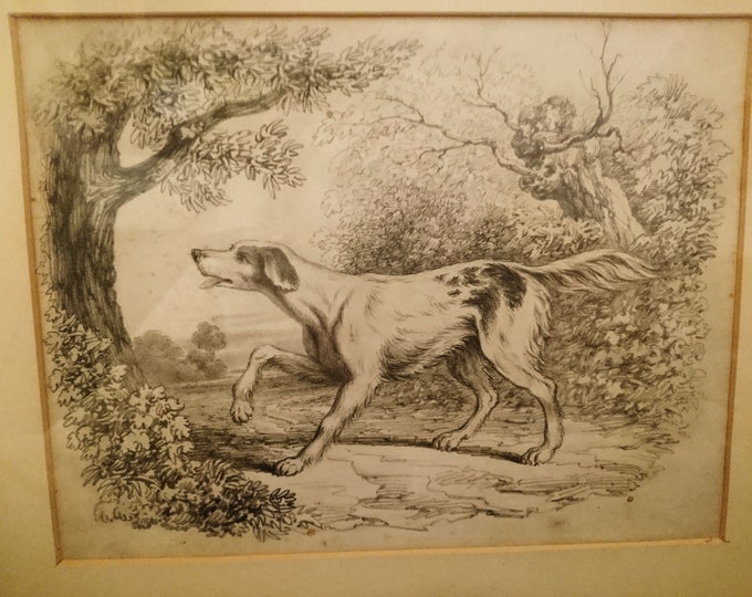 Antique dog drawing, 19th century, study of a hunting dog, pencil drawn hound, framed artwork