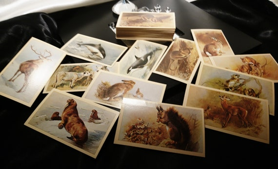 Vintage cigarette cards, Players animals collectable cigarette cards, large selection, vintage advertising